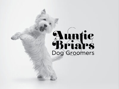 Branding for Auntie briars Dog Grooming