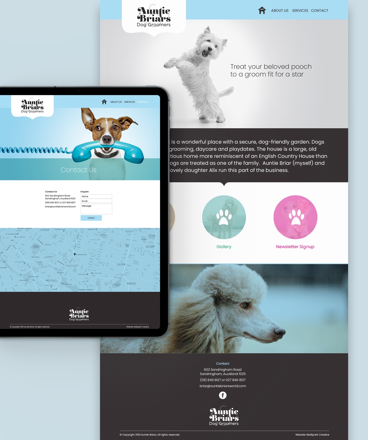 Website for Auntie briars
