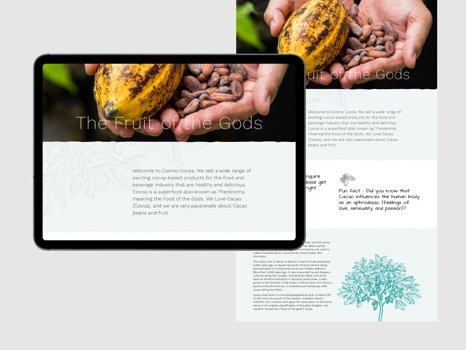 Food and beverage product website